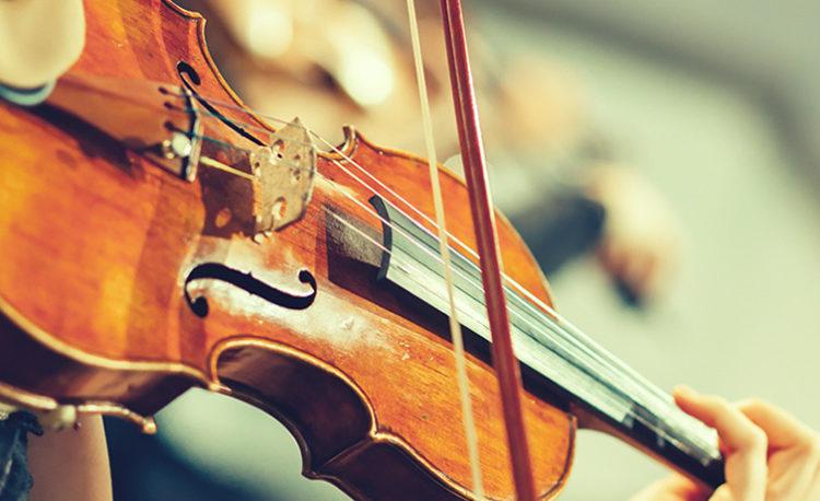Violin course of MBMMC